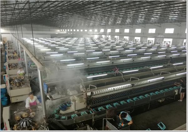 广西恒业丝绸集团